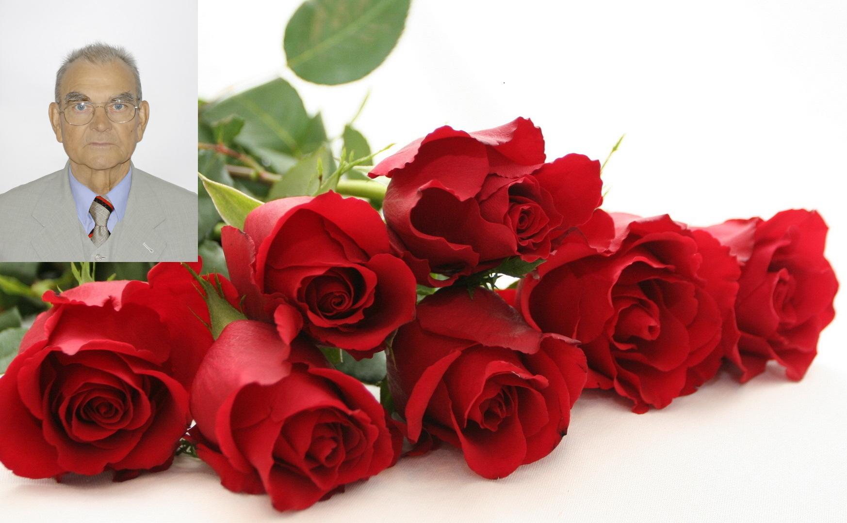 Розы для открытки фото