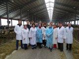 Виїзне заняття гуртківців на фермі з роботизованим доїнням корів