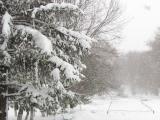 Зима лютий