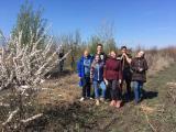 У плодоовочевому саду: весняно-польові роботи