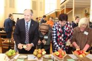 Дегустація нових сортів яблук